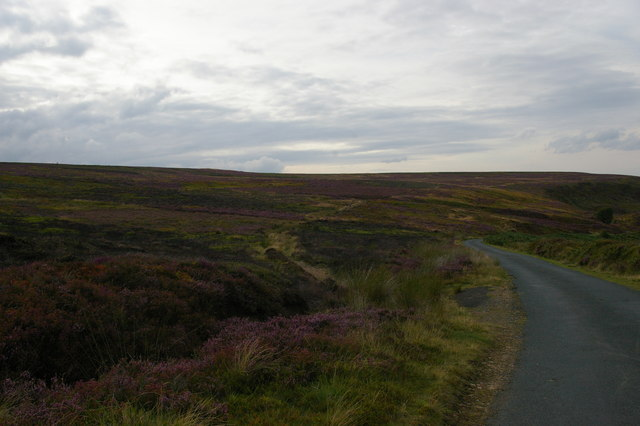 New Way: lane at the head of Little Fryup Dale