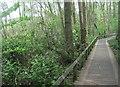 SU8154 : Path around Fleet Pond by Sandy B