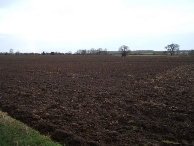 Ploughed field east of the A6072