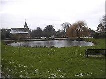 TQ2250 : Buckland Pond by David Howard