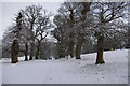 SD5085 : Levens Park in winter by Ian Taylor