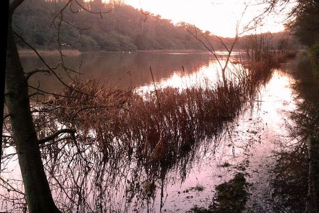 Winter at the loch