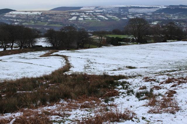 Pasture under snow, Pentrapeod