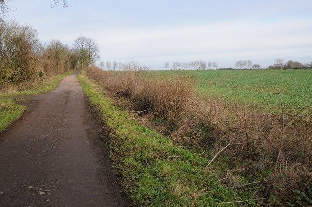 Fosse Way north of Crudwell Lane