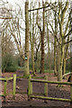TQ3299 : Path in Whitewebbs Wood by Peter Trimming