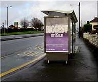 ST3090 : Malpas Road Newport bus shelter advert for the biggest ever BT sale by Jaggery