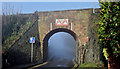 J4079 : Misty railway bridge, Seapark, Holywood (January 2016) by Albert Bridge