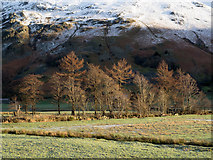 NY3915 : Rough grazing in Patterdale by Trevor Littlewood