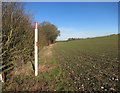 SU4777 : Gas pipeline marker by Old Street Lane by Des Blenkinsopp