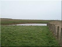 TA1281 : Pond, Filey Spa by JThomas