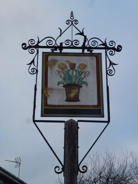 The Flower Pot (Sign) - Public Houses, Inns and Taverns of Wisbech