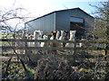 SU0081 : Alpacas, Lane House Farm, Sodom by Vieve Forward