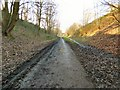 SJ9594 : Tyre Tracks on the Trans Pennine Trail by Gerald England