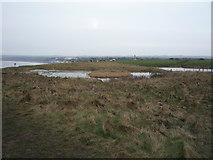 TA1281 : Ponds, Filey Spa by JThomas