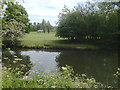SP2965 : River Avon and floodplain, rear of Mercia Way, southeast Warwick, late May by Robin Stott