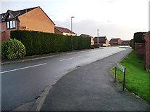 SE5523 : Tabard Road, Eggborough by Christine Johnstone
