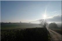 SK9924 : Mist in the Glen by Bob Harvey