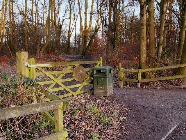 Entrance to Skitters Wood from Woodedge
