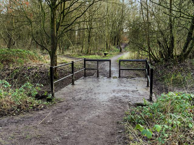 Skitters Wood, Bridge over Millingford Brook