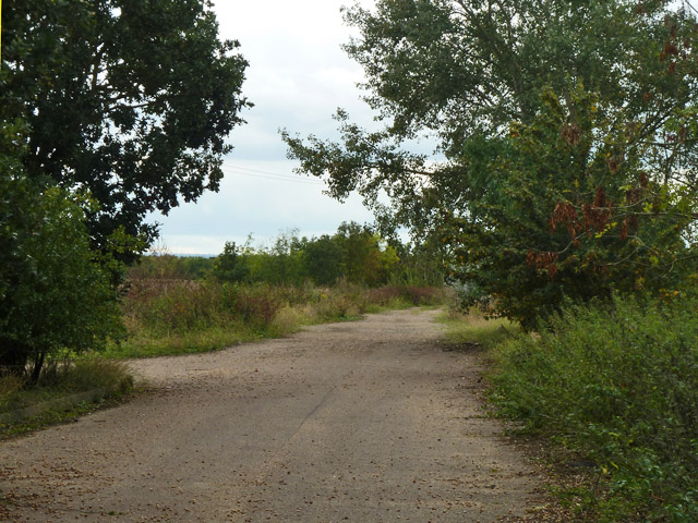 Disused road