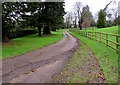 ST4688 : Entrance driveway to Dewstow House near Caldicot  by Jaggery