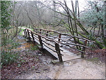 TQ4223 : Footbridge in Sheffield Park by Gareth James