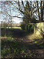 TL1312 : Path off Cravells Road onto Harpenden Common by Adrian Cable