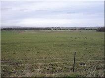 TA0779 : Grazing near Manor Farm by JThomas
