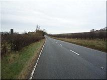 TA0779 : A1039 towards Filey by JThomas