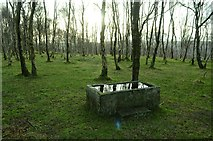 SK2479 : Abandoned Stone Trough in Disused Quarry by Andrew Tryon