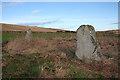 NJ7324 : Balquhain Recumbent Stone Circle (17) by Anne Burgess