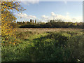 SP3779 : Floodplain of the River Sowe above Sowe Bridge, Walsgrave, Coventry by Robin Stott