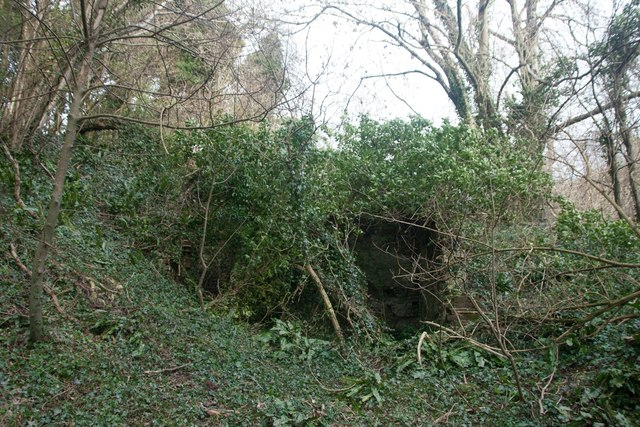 Lime kiln in Link's Plantation