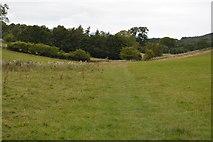 SK1971 : Footpath to Little Longstone by N Chadwick