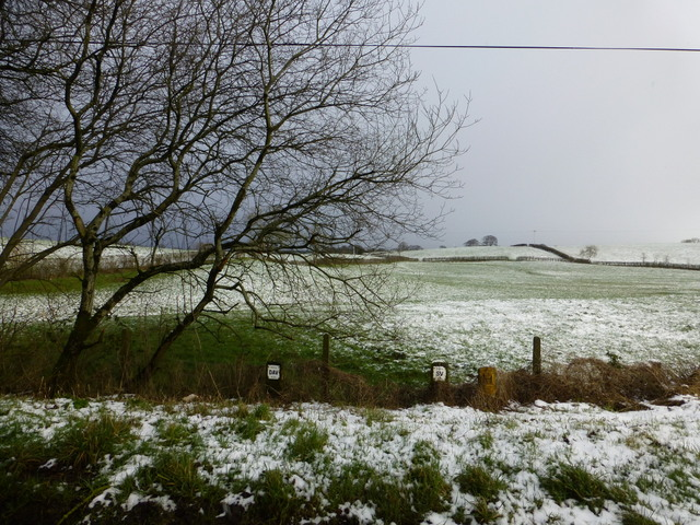 Wintry at Camowen