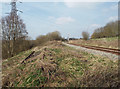SK0207 : Discarded and operational track, Chasewater light railway by Robin Stott