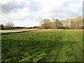 TG2712 : Meadow by Gazebo Covert by Evelyn Simak