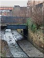 SE2932 : Marshall's bridge over the Hol Beck by Stephen Craven