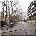 NT2572 : George Square by Richard Webb