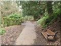 NZ2567 : Footpath in Jesmond Dene by Graham Robson