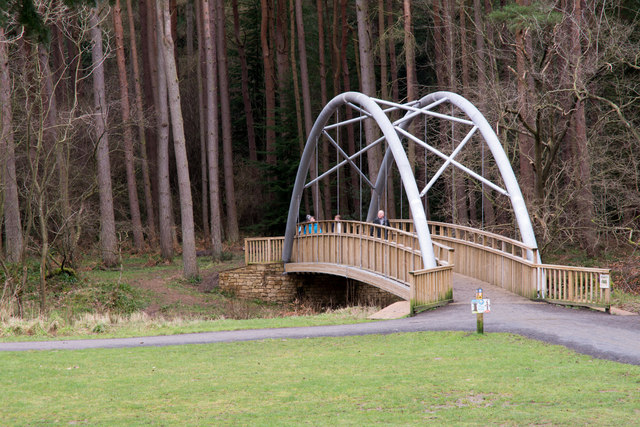 Bridge over Bedburn Beck at Hamsterley Forest