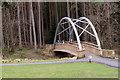 NZ0931 : Bridge over Bedburn Beck at Hamsterley Forest by Trevor Littlewood