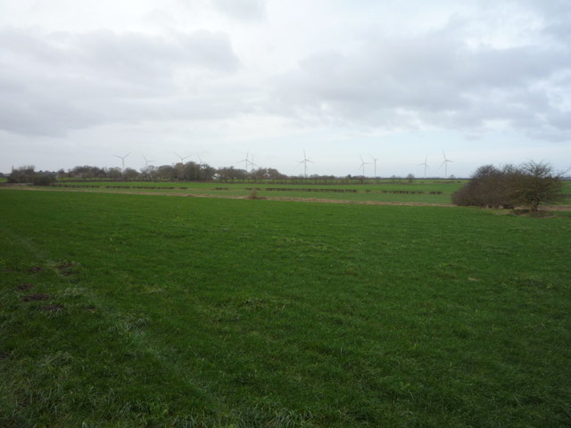Grazing off the A165