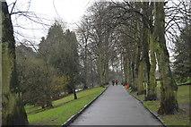 SE2955 : Valley Gardens by N Chadwick