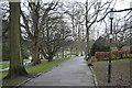 SE2955 : Path through Valley Gardens by N Chadwick