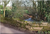 SX9890 : Bridge over Grindle Brook by Derek Harper