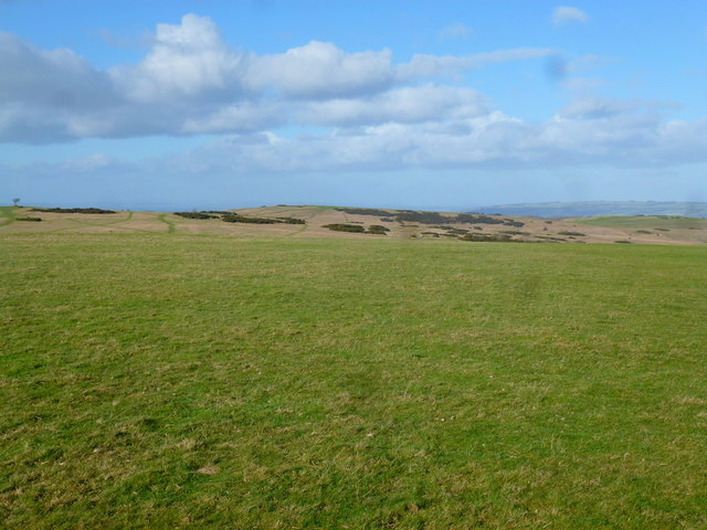 On Cleeve Common, 1