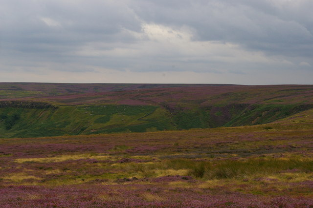 Looking into the head of Great Fryup Dale, from New Way