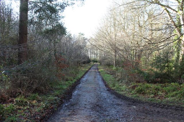 Swinston Drive, Culzean Country Park
