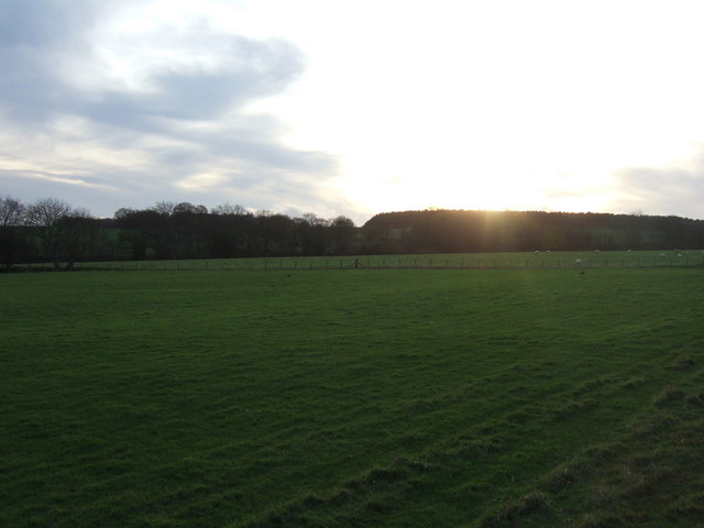 Farmland, Stockley Bridge